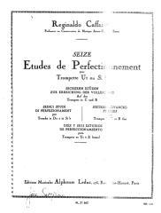 Cafarelli - Etudes.pdf
